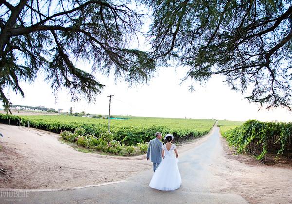 Coenrad & Mariet - Wedding