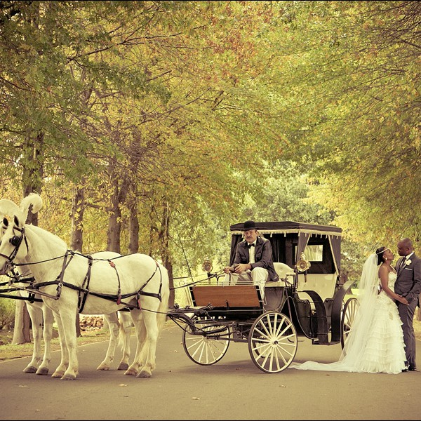Victor & Zintle - African Fairytale - Lourensford