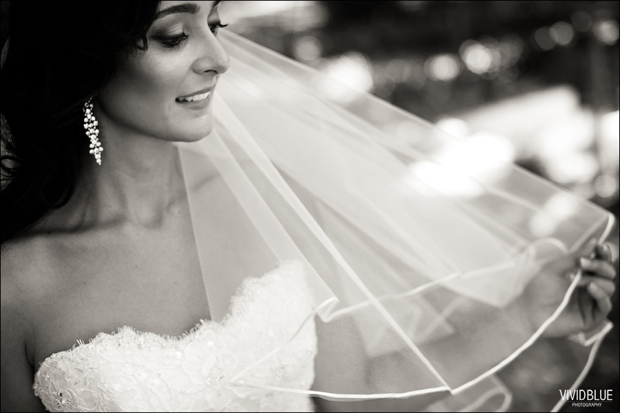 VIVIDBLUE-Ahmed_limia_wedding_lourensford_wedding_conconcepts_stylish014