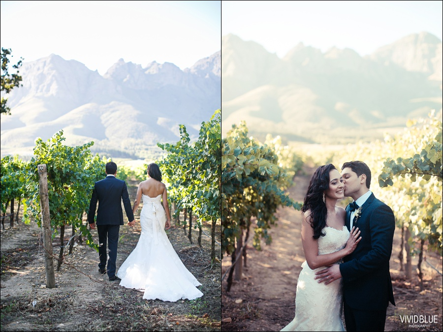 VIVIDBLUE-Ahmed_limia_wedding_lourensford_wedding_conconcepts_stylish041