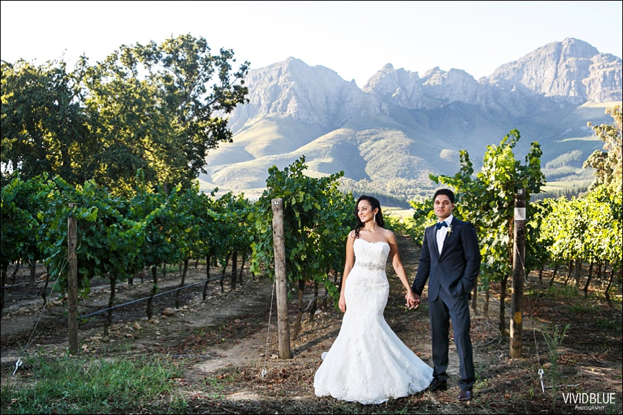 VIVIDBLUE-Ahmed_limia_wedding_lourensford_wedding_conconcepts_stylish043