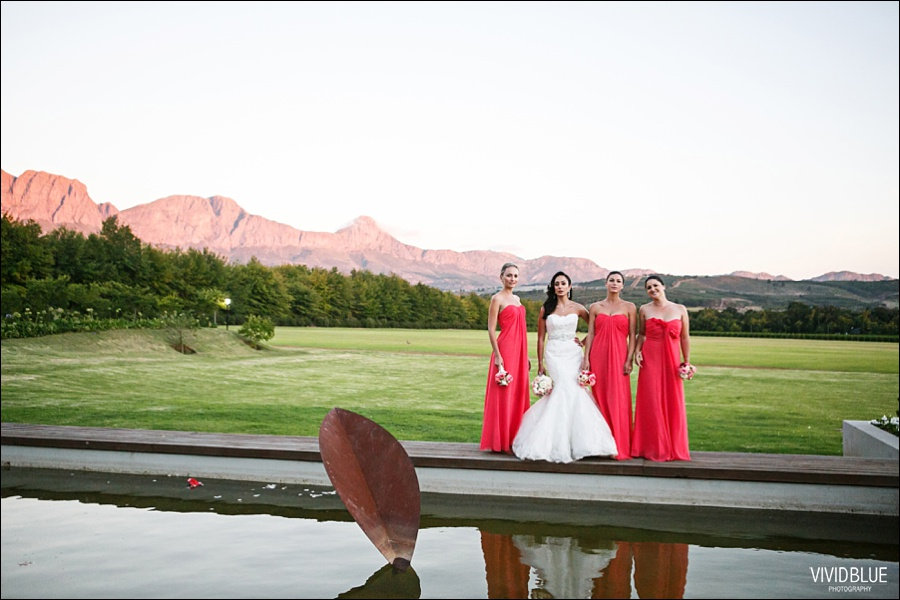 VIVIDBLUE-Ahmed_limia_wedding_lourensford_wedding_conconcepts_stylish054