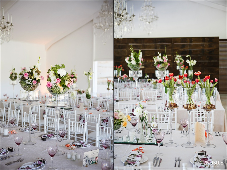 VIVIDBLUE-Ahmed_limia_wedding_lourensford_wedding_conconcepts_stylish060