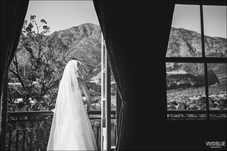 VividBlue-phil-erin-wedding-backberg-south-africa013