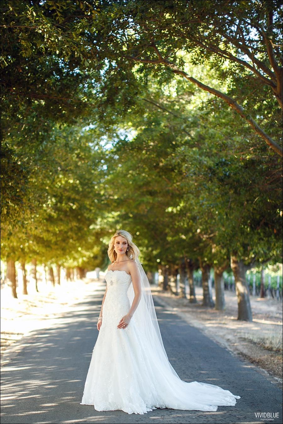 VividBlue-phil-erin-wedding-backberg-south-africa044
