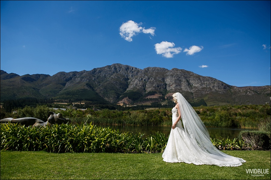 VividBlue-phil-erin-wedding-backberg-south-africa046