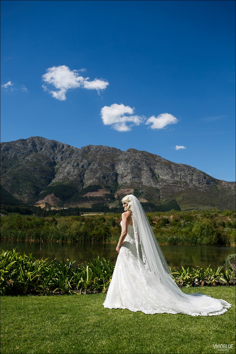 VividBlue-phil-erin-wedding-backberg-south-africa047