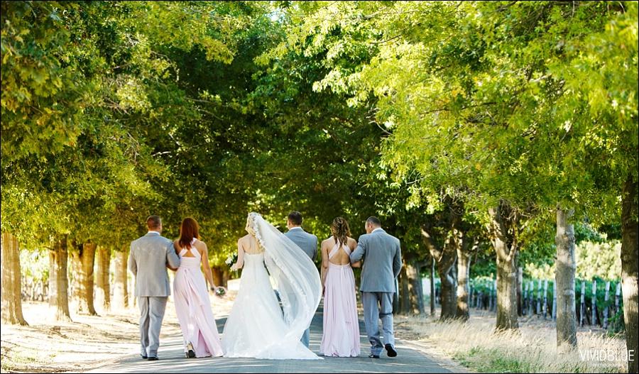 VividBlue-phil-erin-wedding-backberg-south-africa052