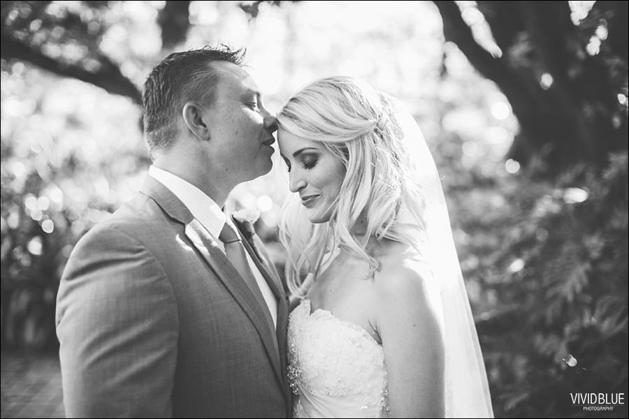 VividBlue-phil-erin-wedding-backberg-south-africa053