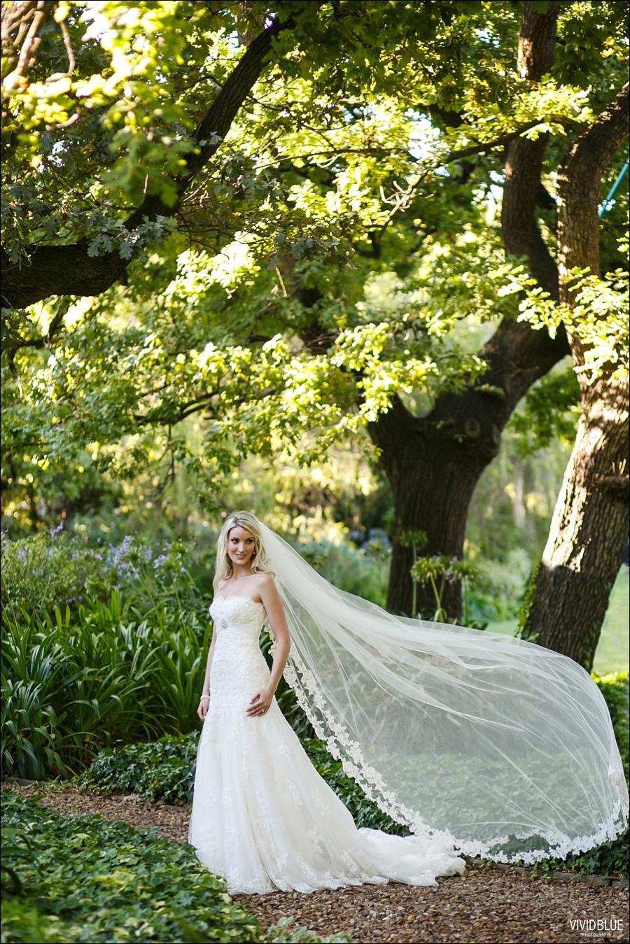 VividBlue-phil-erin-wedding-backberg-south-africa059