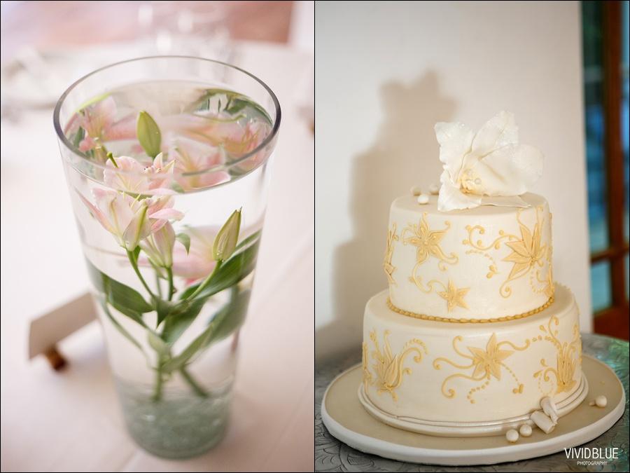VividBlue-phil-erin-wedding-backberg-south-africa074