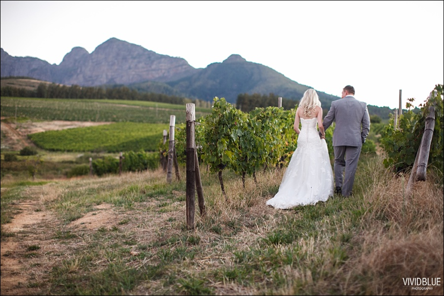 VividBlue-phil-erin-wedding-backberg-south-africa079