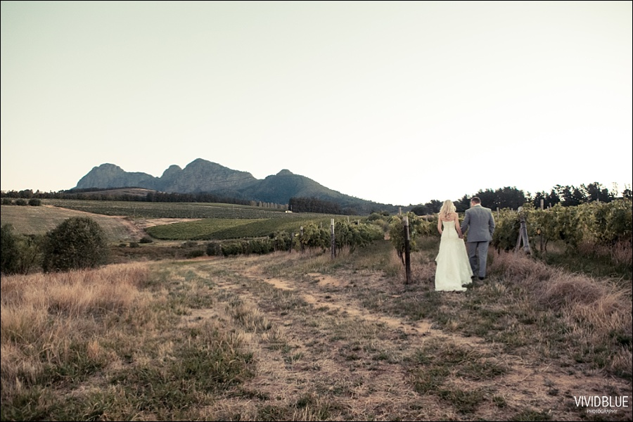 VividBlue-phil-erin-wedding-backberg-south-africa081