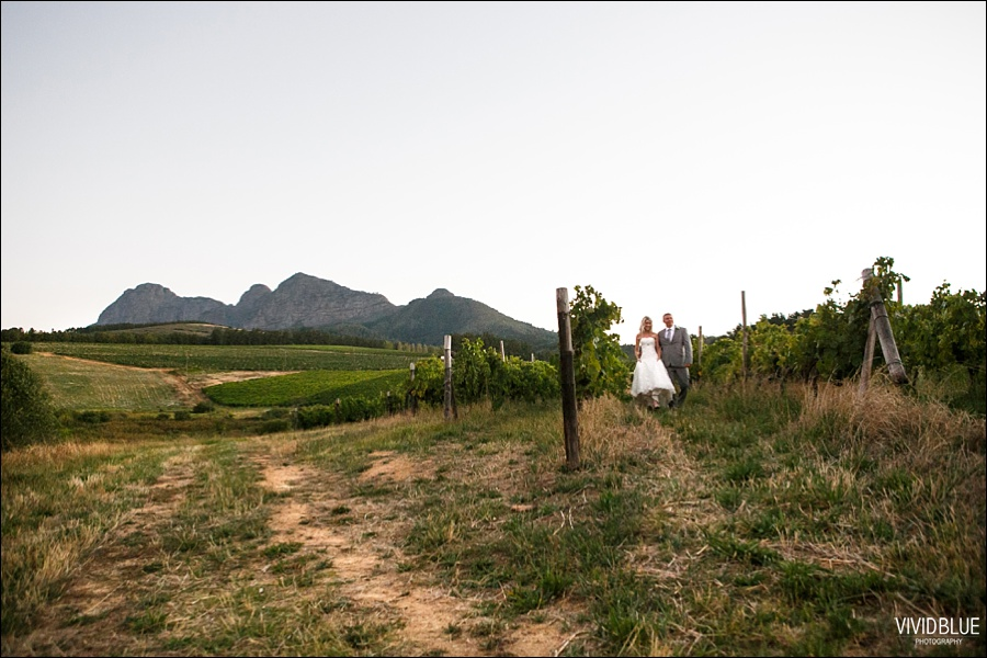 VividBlue-phil-erin-wedding-backberg-south-africa082