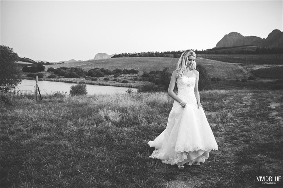 VividBlue-phil-erin-wedding-backberg-south-africa083