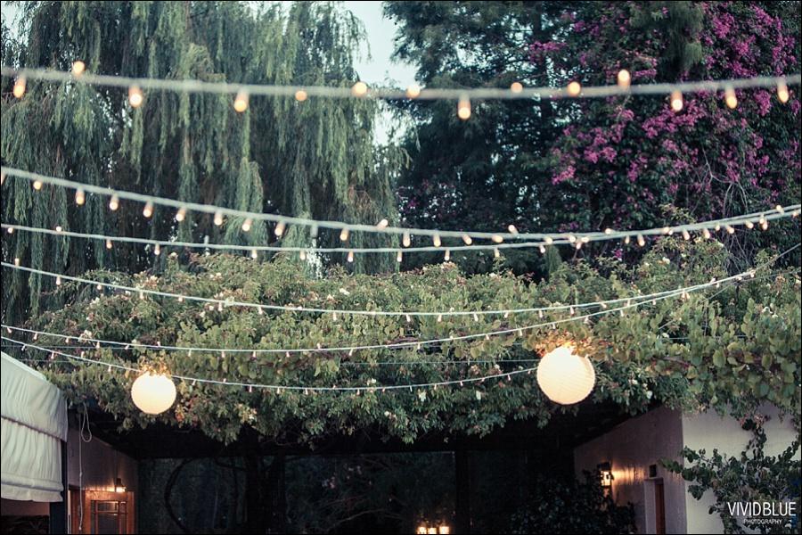 VividBlue-phil-erin-wedding-backberg-south-africa091
