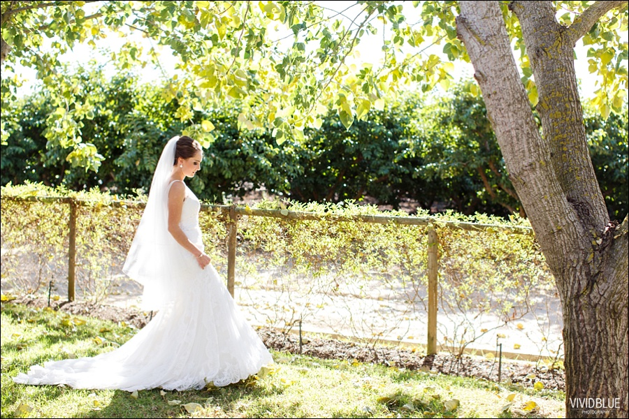 VividBlue-philip-anlika-kleinevalleij-wedding044