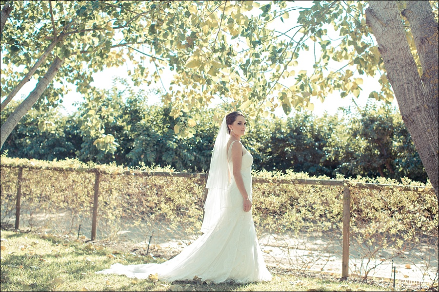 VividBlue-philip-anlika-kleinevalleij-wedding045