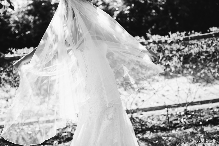 VividBlue-philip-anlika-kleinevalleij-wedding046