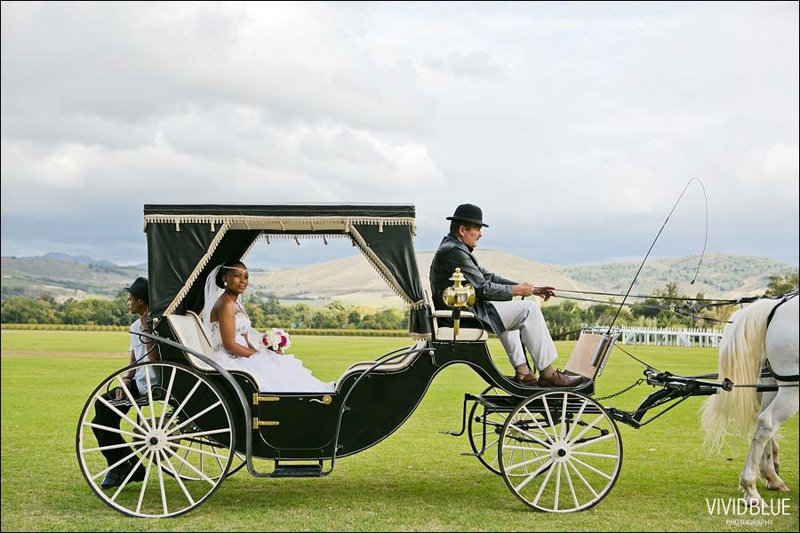 vividblue-photography-ceremony-Wedding003