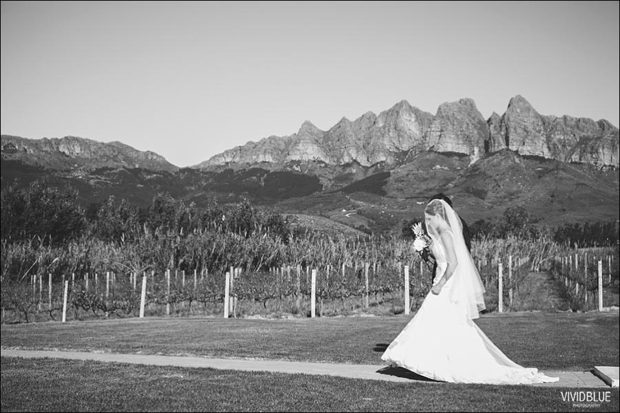 vividblue-photography-ceremony-Wedding015