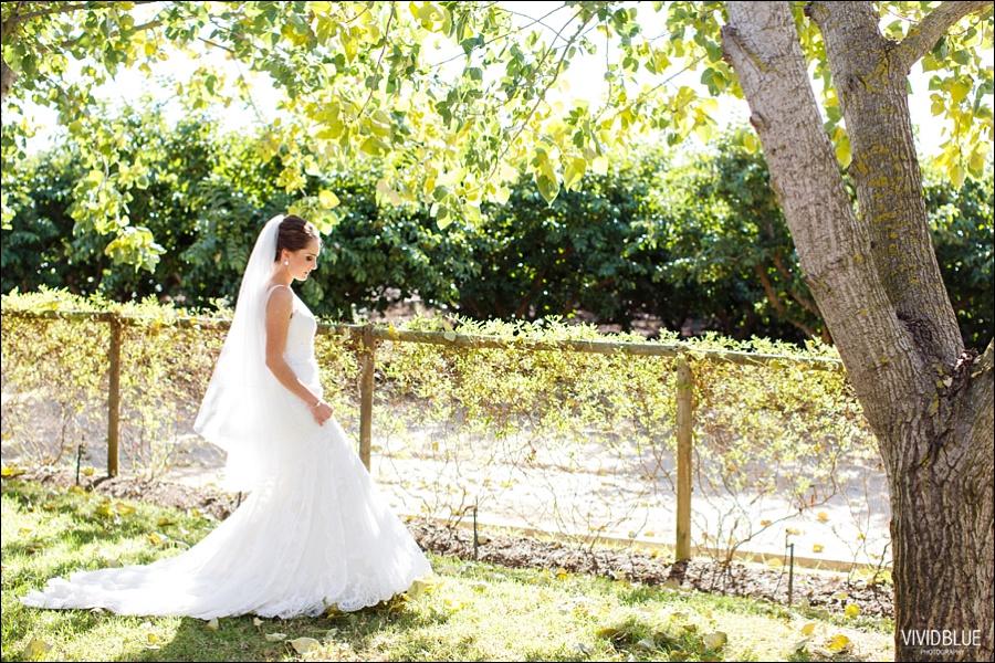 vividblue-weddings-South-Africa106