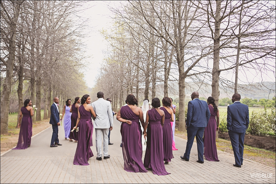 Vivid-Blue-Kundle-Femi-Wedding-Lourensford064