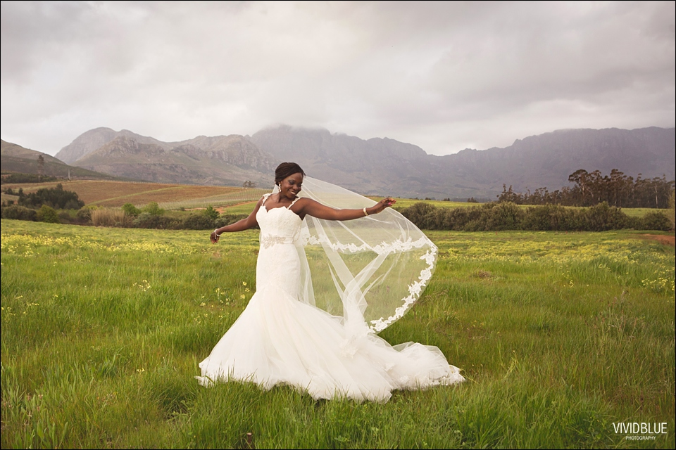 Vivid-Blue-Kundle-Femi-Wedding-Lourensford074