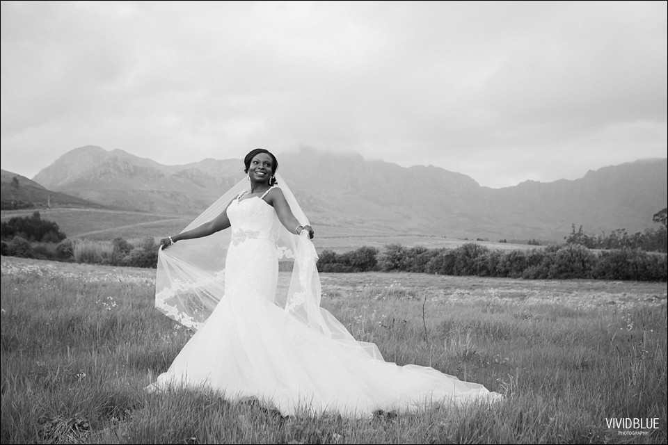 Vivid-Blue-Kundle-Femi-Wedding-Lourensford076