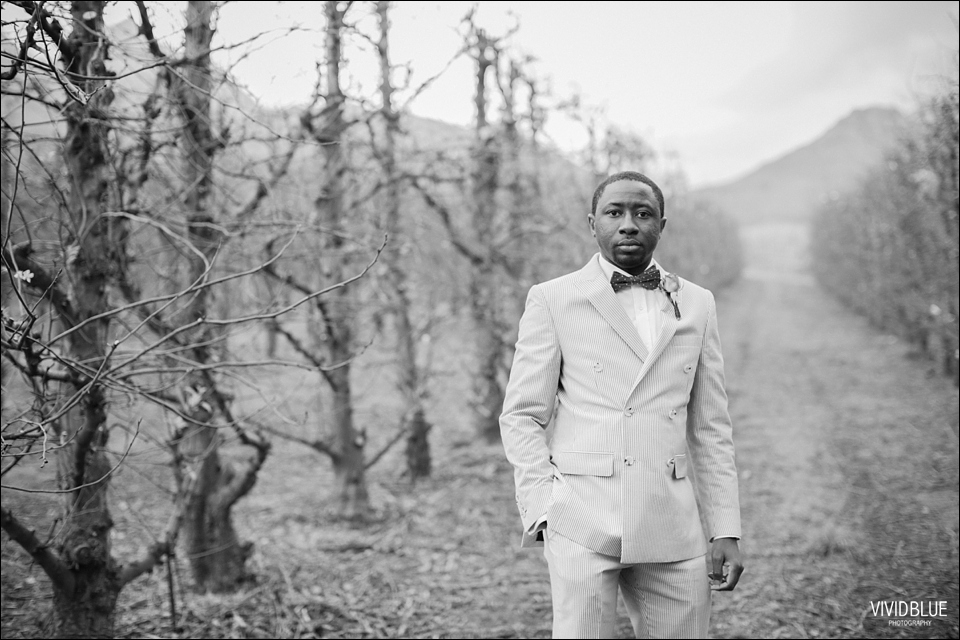 Vivid-Blue-Kundle-Femi-Wedding-Lourensford085