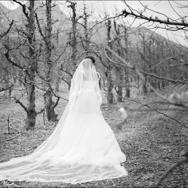 Lourensford Wedding - Kunle & Femi