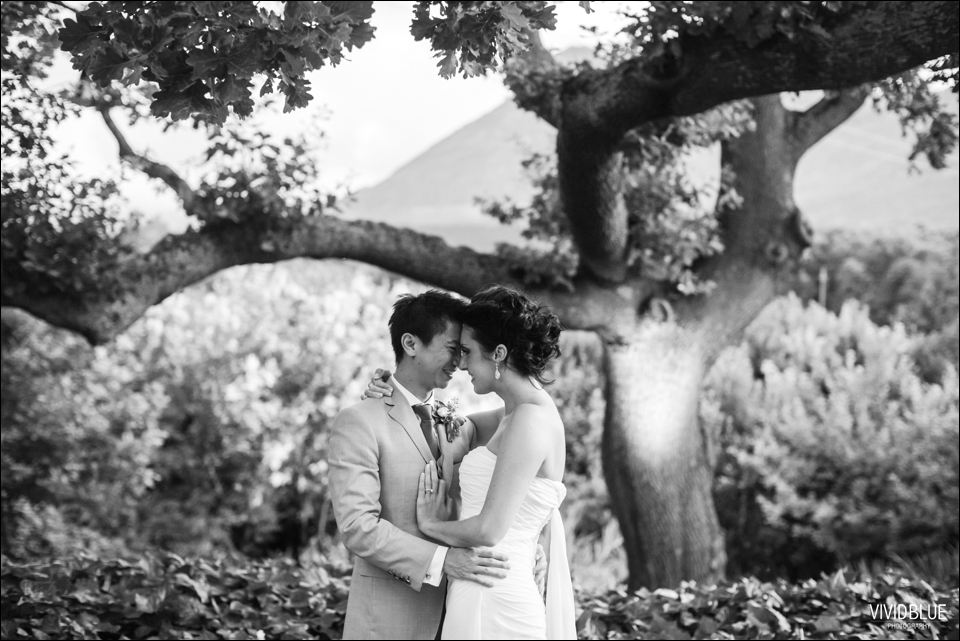 VividBlue-Greg-Mia-theconservatory-wedding117