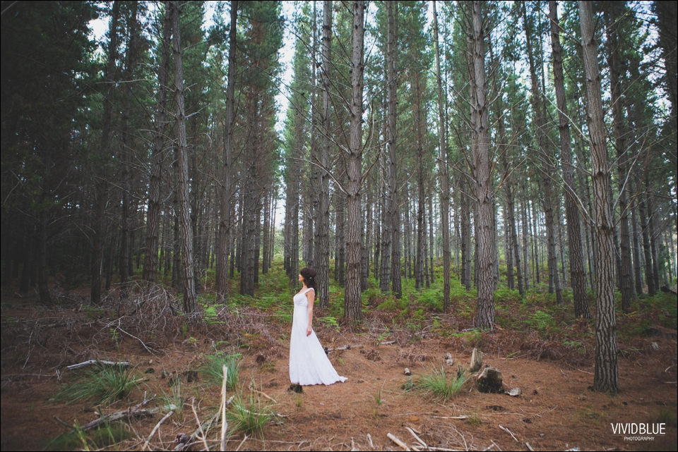 Vivid-Blue-Christo-Eveleen-Forest-wedding00118