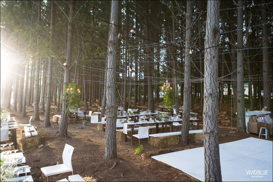 Vivid-Blue-Christo-Eveleen-Forest-wedding00131