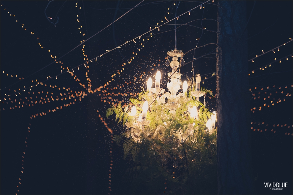 Vivid-Blue-Christo-Eveleen-Forest-wedding00156