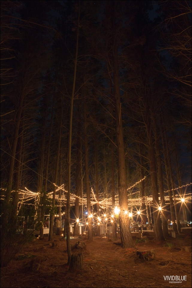 Vivid-Blue-Christo-Eveleen-Forest-wedding00176
