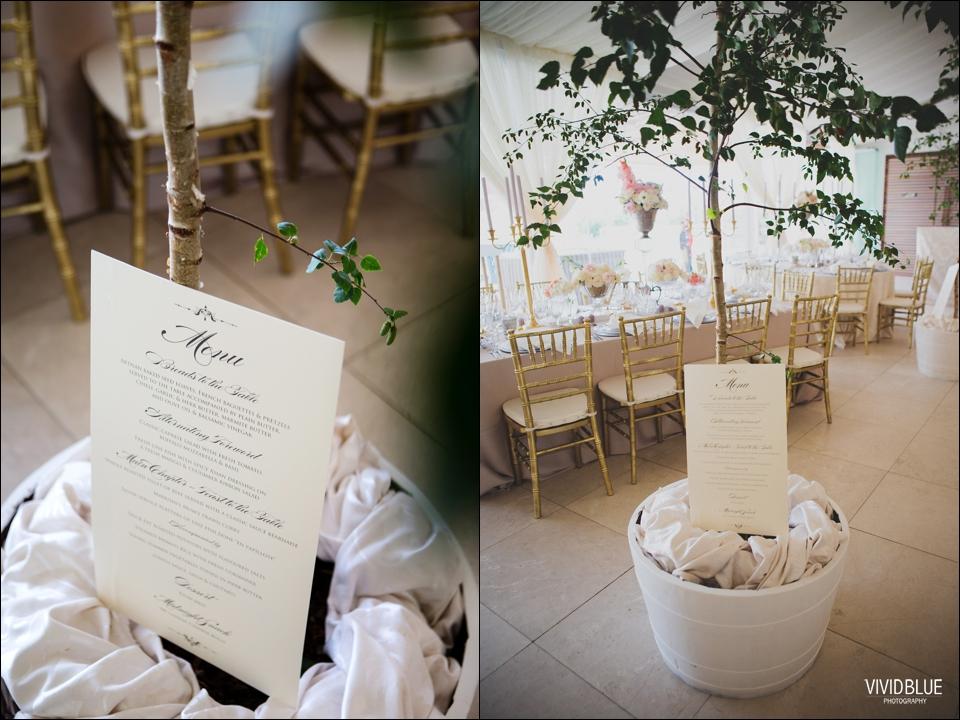 VividBlue-Stefan_Madushi-Lourensford-wedding041