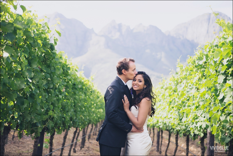 VividBlue-Stefan_Madushi-Lourensford-wedding083