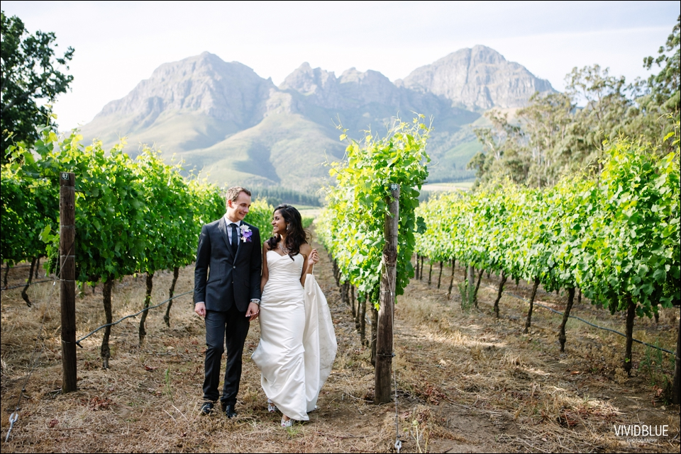 VividBlue-Stefan_Madushi-Lourensford-wedding086