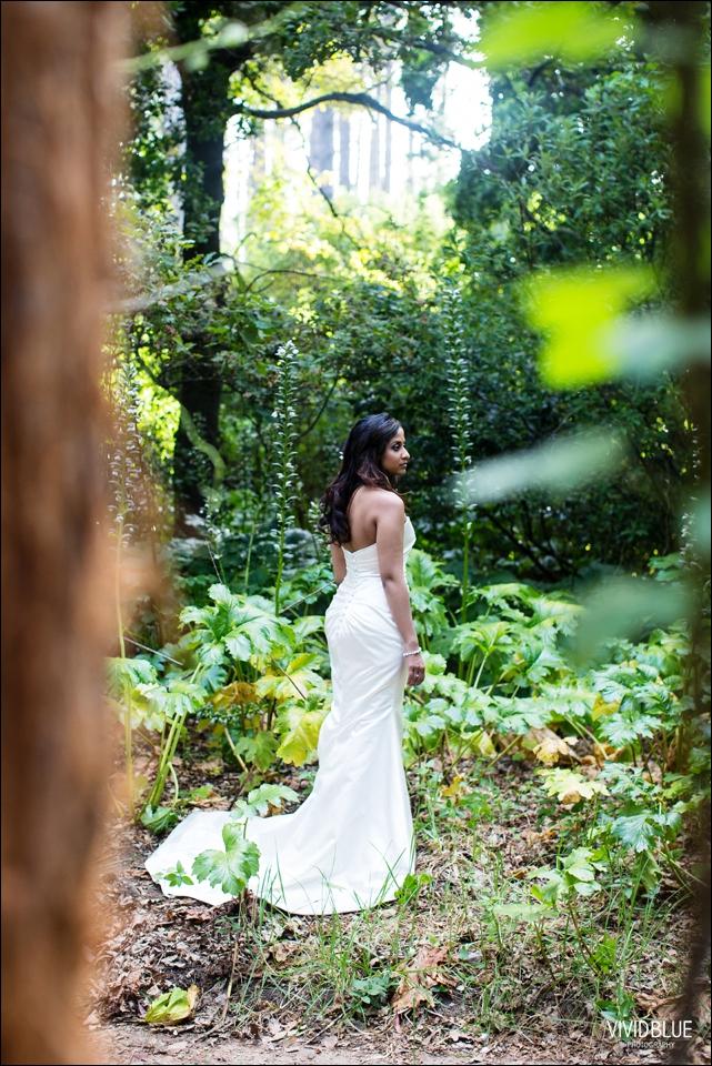 VividBlue-Stefan_Madushi-Lourensford-wedding095