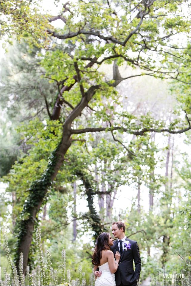 VividBlue-Stefan_Madushi-Lourensford-wedding100