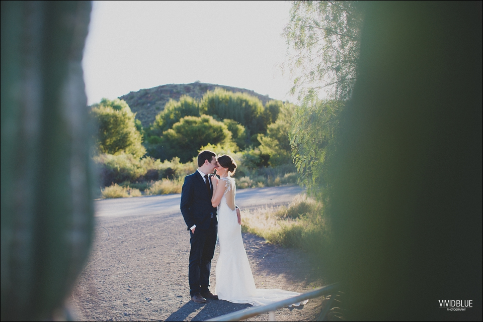 VividBlue-Marius-sanmare-karoo-wedding073