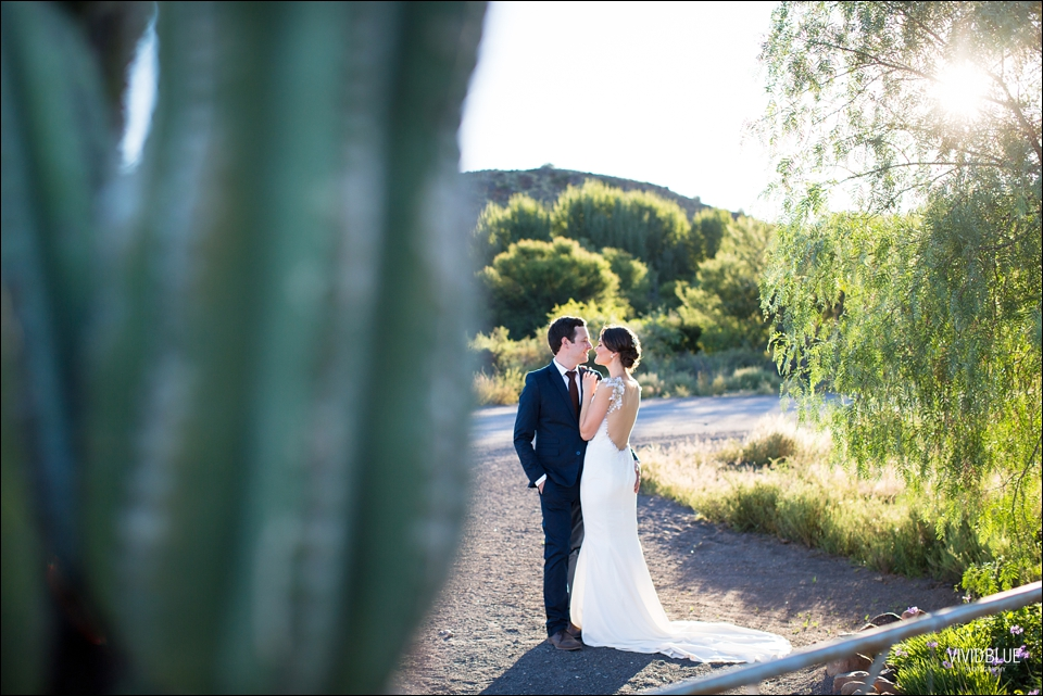 VividBlue-Marius-sanmare-karoo-wedding074