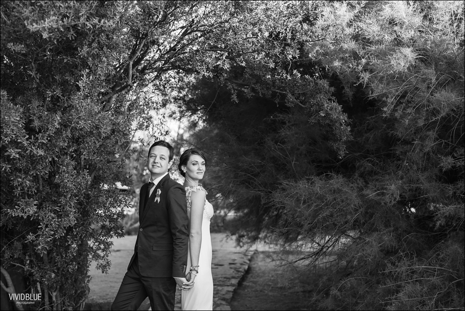 VividBlue-Marius-sanmare-karoo-wedding085