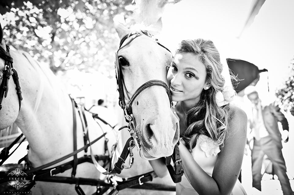 the-aleit-group-eduardo-lina-cavalli-wedding095