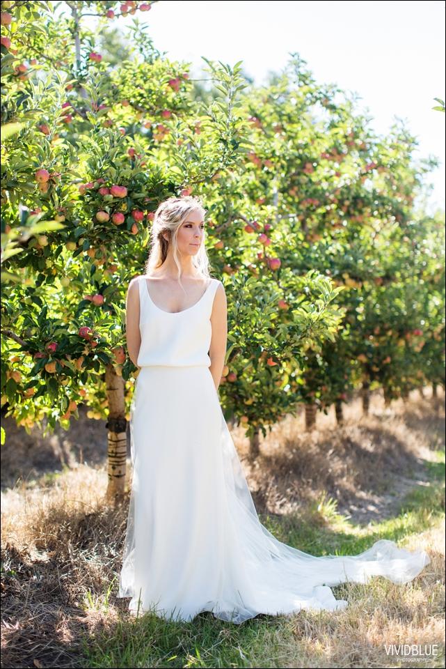 Vividblue-blue-heath-terri-wedding-oak-valley-elgin007
