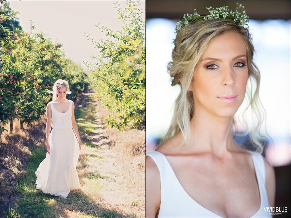 Vividblue-blue-heath-terri-wedding-oak-valley-elgin009