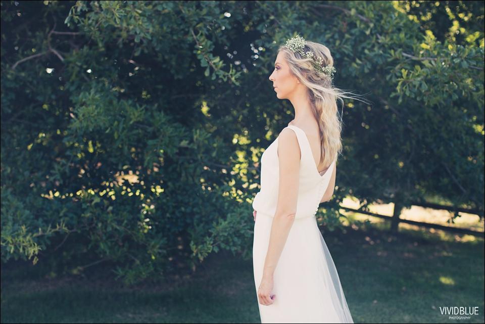 Vividblue-blue-heath-terri-wedding-oak-valley-elgin011