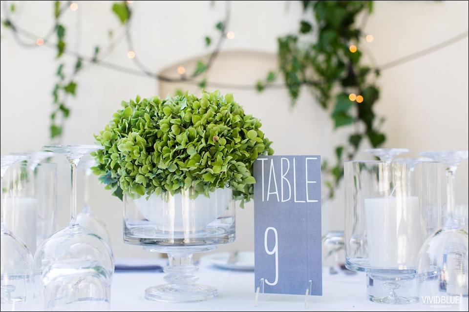 Vividblue-blue-heath-terri-wedding-oak-valley-elgin047