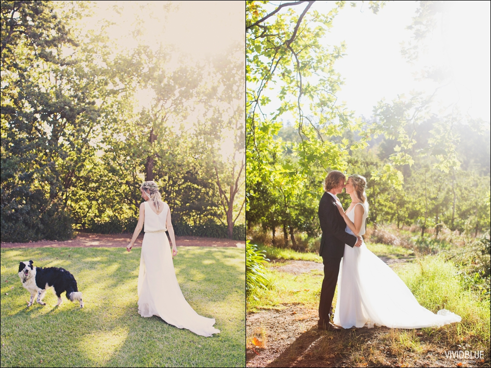 Vividblue-blue-heath-terri-wedding-oak-valley-elgin049